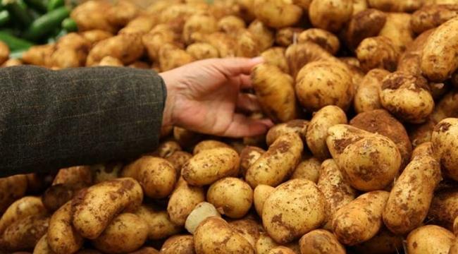 Patateste 'sıfır gümrük vergisi' uygulaması uzatıldı