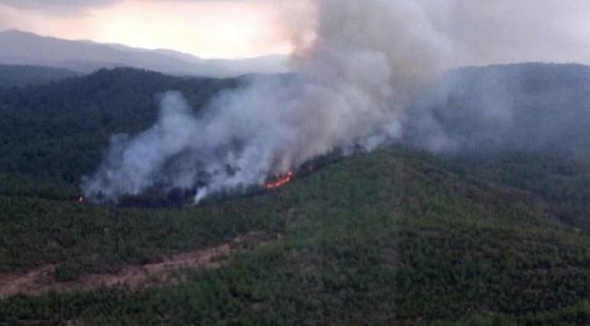 Muğla ormanları yanmaya devam ediyor: Bu sefer de Köyceğiz'de yangın çıktı