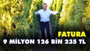 AKP'nin 'ağaç' sevdası! Bir meşe fidanına 16 bin lira ödenmiş