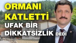 AKP'li başkan ormanı katledip kaçak bina diktirdi