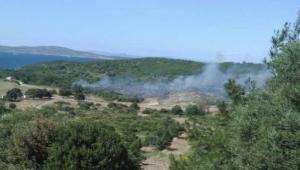 İzmir'de 1 hektar makilik alan yandı