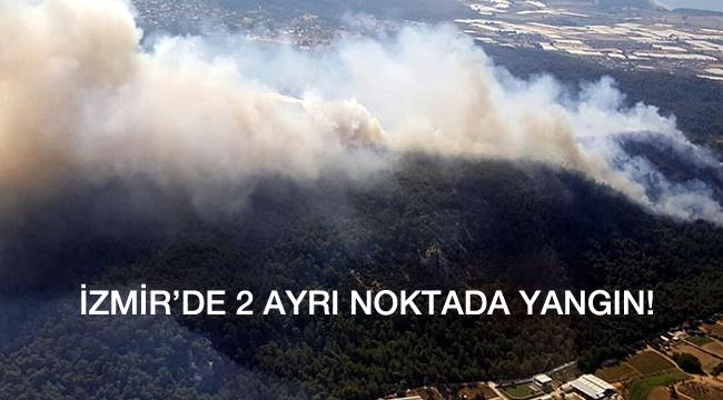 İzmir'de 2 ayrı noktada orman yangını!