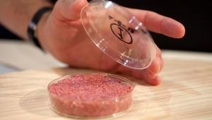 Bilim insanları 2030'da ne yiyeceğimizi tahmin etti