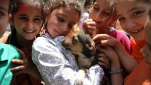Karşıyakalı öğrenciler hayvan sevgisini anlatacak