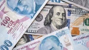 Ünlü ekonomist açıkladı: Doların yükselişi sürecek mi?