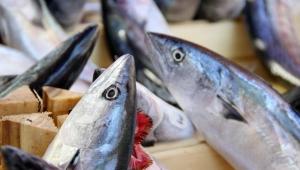 'Tüketici ucuz balık beklemesin'