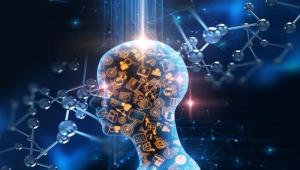 İnsan beyni ilk kez kablosuz olarak bilgisayara bağlandı