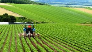 İçişleri Bakanlığı açıkladı: Çiftçiler görev belgesi sunmayacak