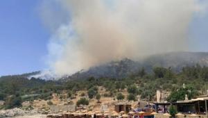 Milas'ta ormanlık alanda yangın: Ekipler müdahale ediyor