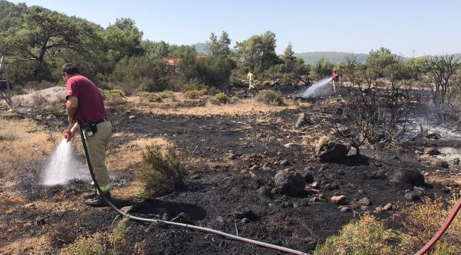 Urla Birgi çıkan yangın kısa sürede söndürüldü